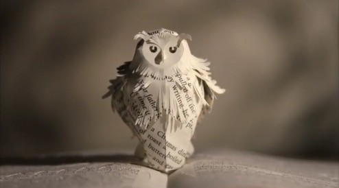 The Magic Will Never End... Simple Follow The Owl...